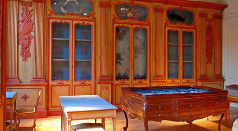 Dominique Chaussat pour la restauration du cabinet Lafaille au Muséum de la Rochelle