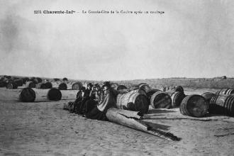 Benjamin Caillaud, pour « Fernand Braun, photographe des Charentes »